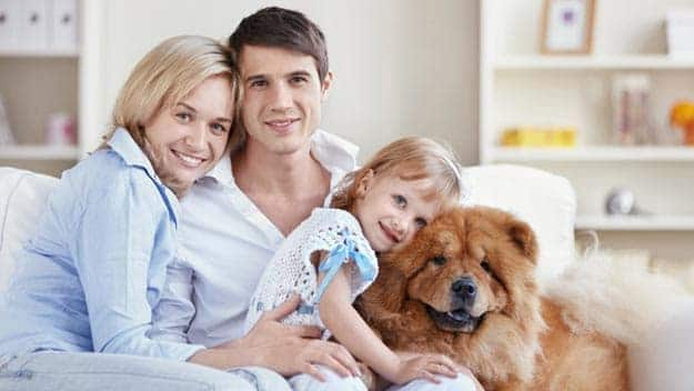 Wills & Trusts dog-young-family Direct Wills Buckingham